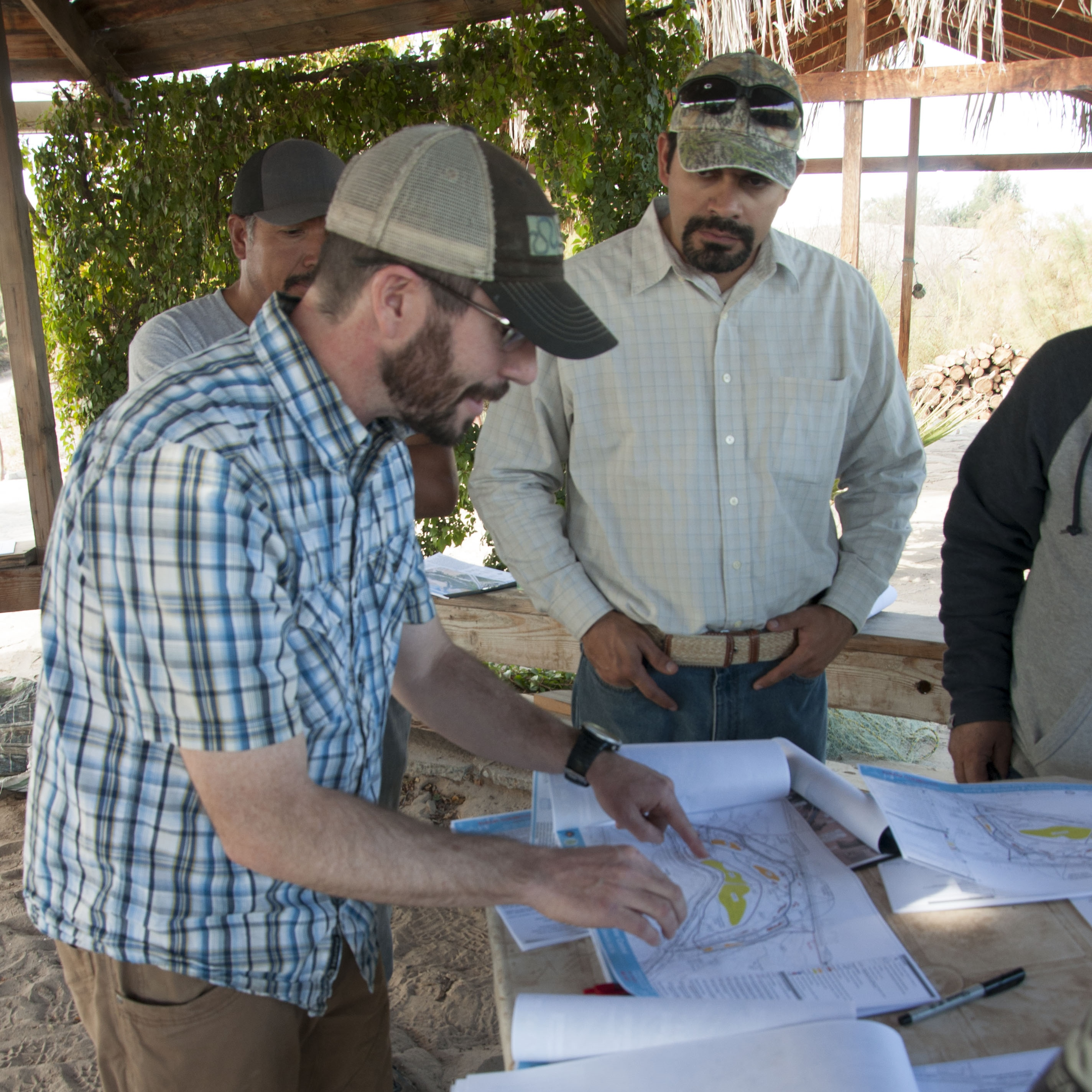 Project Update: El Chausse Wetland Restoration Project, Colorado River Delta, Mexico